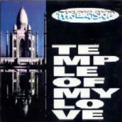 THE BIG SKIP - Temple Of My Love CD
