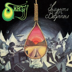 SHAGGY - Lessons For Beginners CD